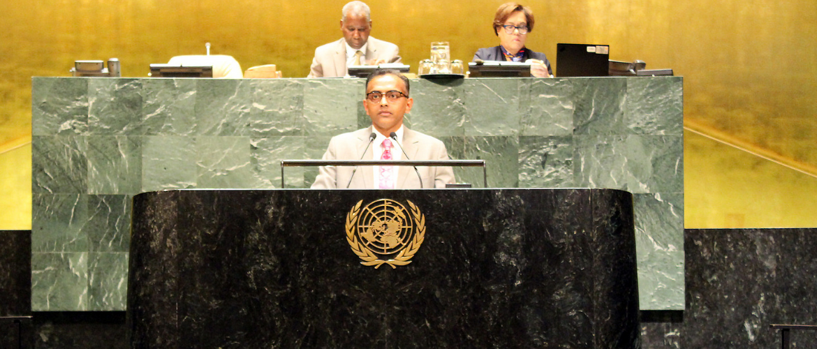 Ambassador K. Nagaraj Naidu, Deputy Permanent Representative at the UN General Assembly meeting on New Partnership for Africa's Development: progress in implementation and international support
